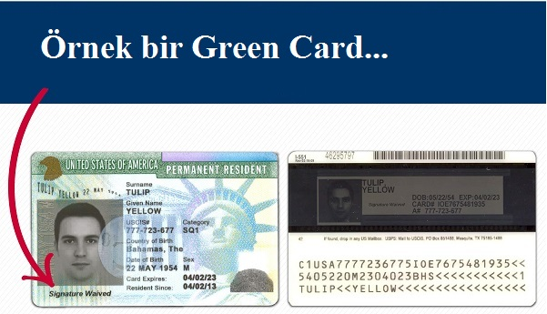 Örnek Green Card